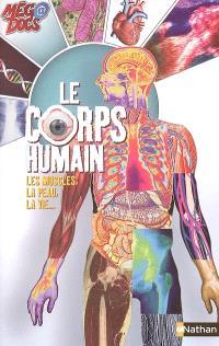 Le corps humain : les muscles, la peau, la vie...