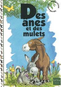 Des ânes et des mulets