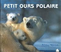 Petit ours polaire