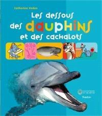 Les dessous des dauphins et des cachalots