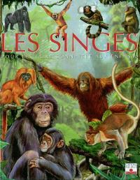 Les singes : pour les faire connaître aux enfants