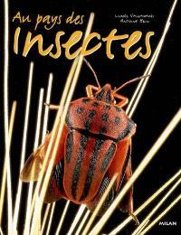 Au pays des insectes