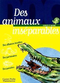 Des animaux inséparables