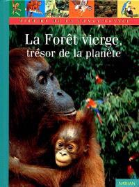 La forêt vierge, trésor de la planète