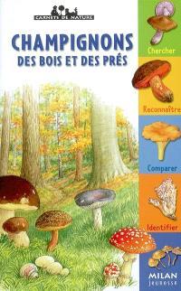 Les champignons des bois et des prés