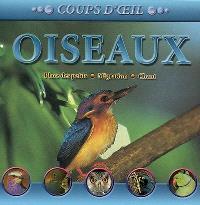 Oiseaux : place des petits, migration, chant