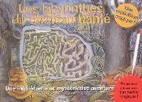 Les labyrinthes du château hanté : une inquiétante et mystérieuse aventure