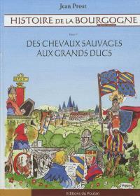 Histoire de la Bourgogne en bandes dessinées. Volume 1, Des chevaux sauvages aux grands ducs