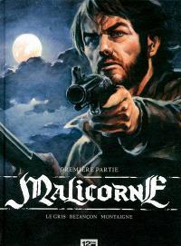 Malicorne. Volume 1
