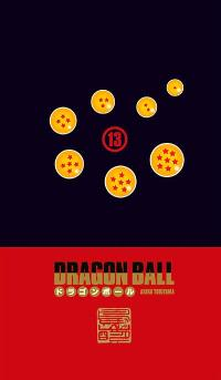 Dragon Ball : coffret. Volume 13