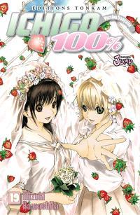 Ichigo 100 %. Volume 19, Un scénario plein de joie