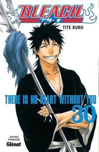 Bleach. Volume 30, There is no heart without you