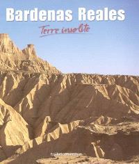 Bardenas Reales : terre insolite