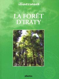 La forêt d'Iraty