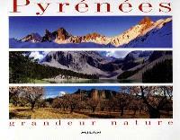 Pyrénées, grandeur nature