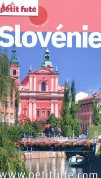 Slovénie : 2010-2011