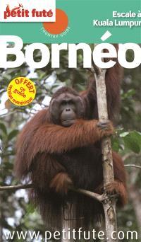 Bornéo : escale à Kuala Lumpur