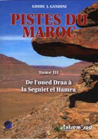 Pistes du Maroc : à travers l'Histoire. Volume 3, De l'oued Draa à la Seguiet el Hamra