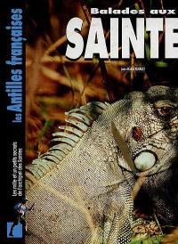 Balades aux Saintes : les mille et un petits secrets de l'archipel des Saintes