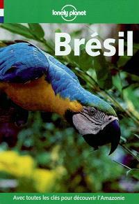 Brésil : guide de voyage