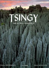 Tsingy : forêt de pierre, Madagascar