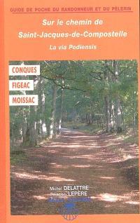 Sur le chemin de Saint-Jacques-de-Compostelle : la via Podiensis : Conques, Figeac, Moissac