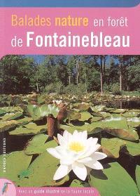 Balades nature en forêt de Fontainebleau : avec un guide pour observer les animaux