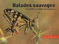 Balades sauvages : faune et flore, au détour de nos chemins