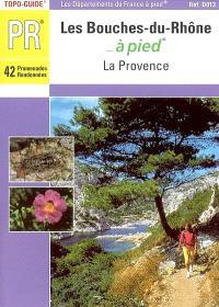 Les Bouches-du-Rhône... à pied : 42 promenades et randonnées