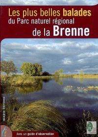 Les plus belles balades du Parc naturel régional de la Brenne