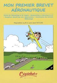 Mon premier brevet aéronautique : préparation au B.I.A.