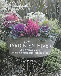 Un jardin en hiver : 35 projets originaux fleuris et colorés expliqués pas à pas