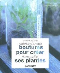 Maîtriser l'art des boutures pour créer et multiplier ses plantes