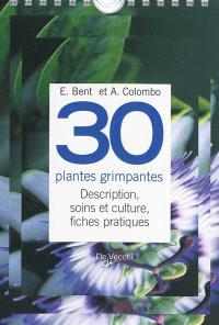 30 plantes grimpantes : description, soins et culture, fiches pratiques