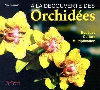 A la découverte des orchidées : espèces, culture, multiplication