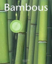 Bambous : les conseils d'un spécialiste pour l'achat, l'entretien et la multiplication