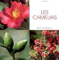 Les camélias : les choisir et les soigner