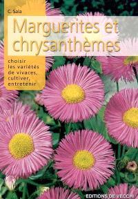 Les marguerites et les chrysanthèmes : choisir les variétés de vivaces, cultiver, entretenir