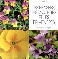 Les pensées, les violettes et les primevères : les choisir et les soigner