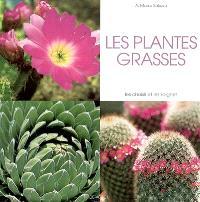 Les plantes grasses : les choisir et les soigner