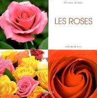 Les roses : culture et soins