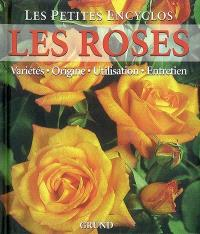 Les roses : variétés, origine, utilisation, entretien
