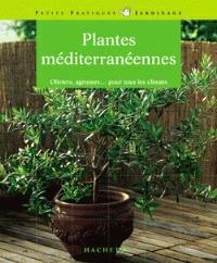 Plantes méditerranéennes