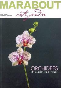 Spécial orchidées