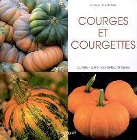 Courges et courgettes : culture, soins, conseils pratiques