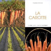 La carotte : culture, soins, conseils pratiques