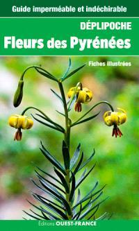 Fleurs des Pyrénées : fiches illustrées
