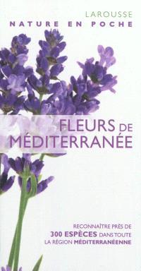 Fleurs de Méditerranée : reconnaître près de 300 espèces dans toute la région méditerranéenne