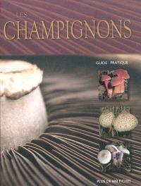 Les champignons : guide pratique