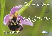 Les orchidées en Lot-&-Garonne